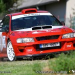 Rallye Železné hory 2013